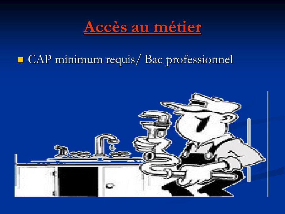 Accès au métier CAP minimum requis/ Bac professionnel CAP minimum requis/ Bac professionnel