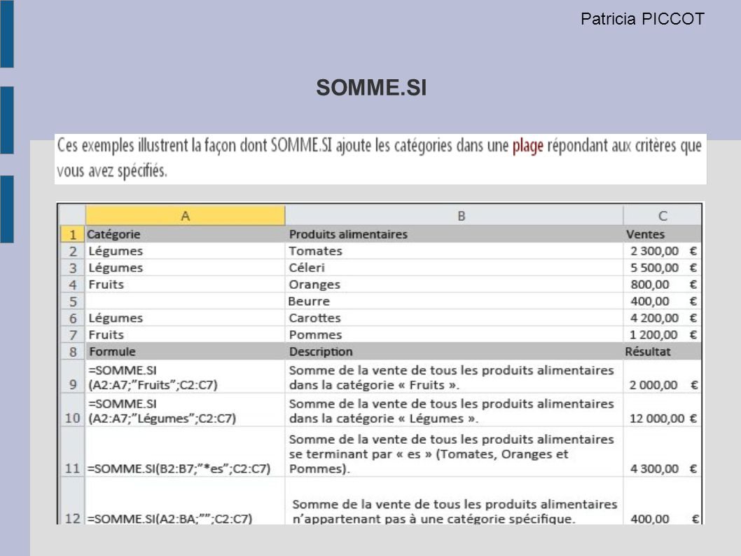 SOMME.SI Patricia PICCOT