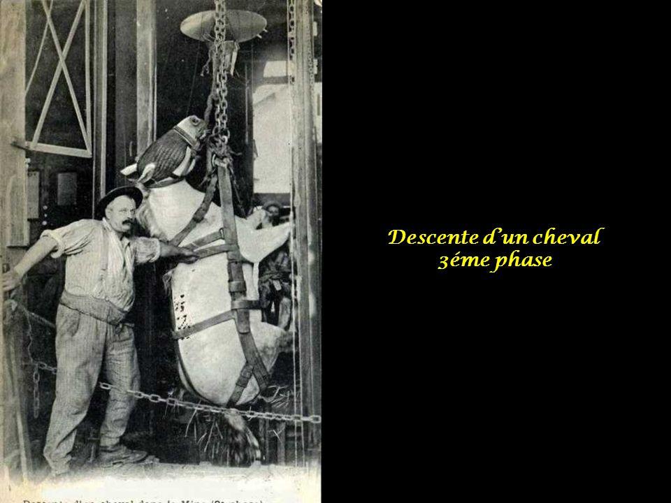 Descente dun cheval - 2éme phase