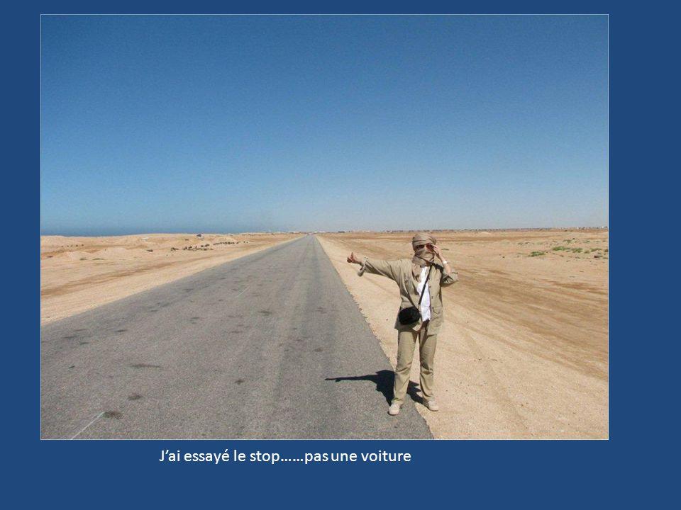 Que faire au milieu des dunes…..