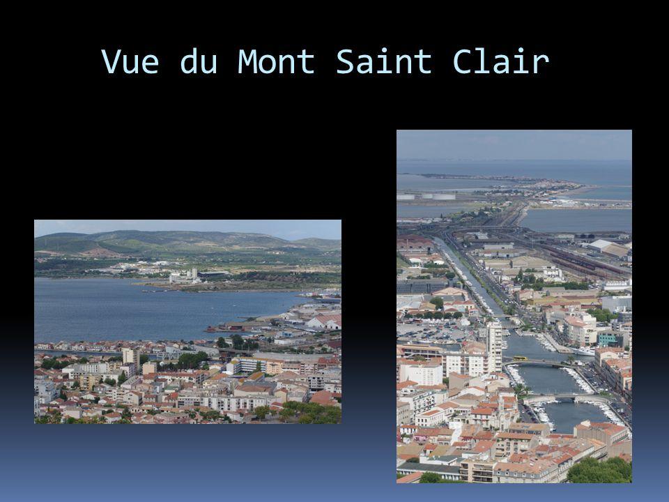 Vue du Mont Saint Clair