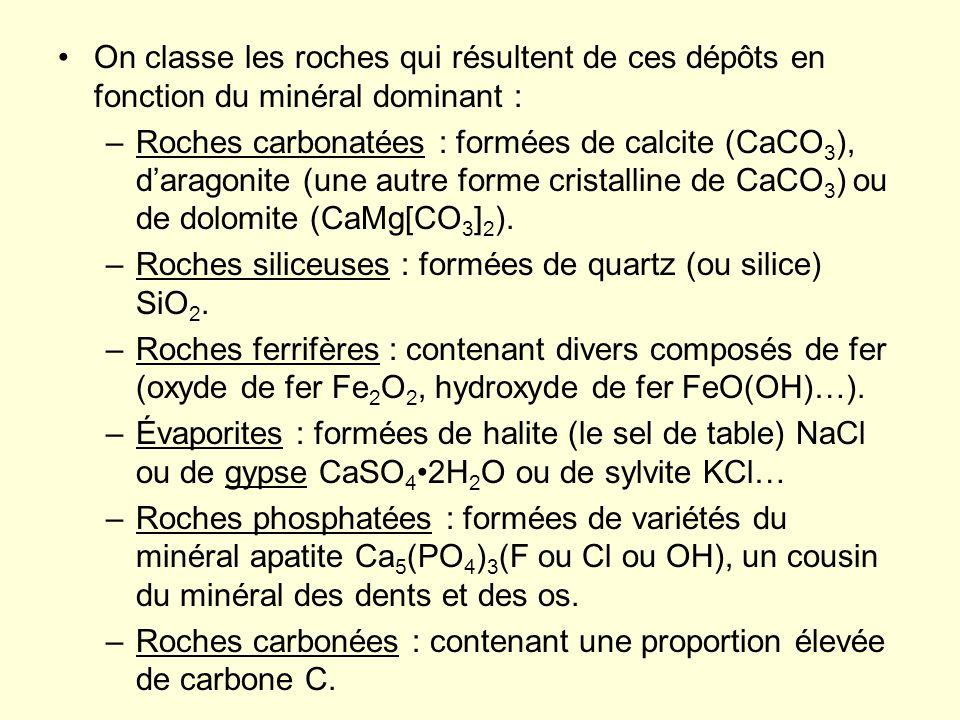 On classe les roches qui résultent de ces dépôts en fonction du minéral dominant : –Roches carbonatées : formées de calcite (CaCO 3 ), daragonite (une