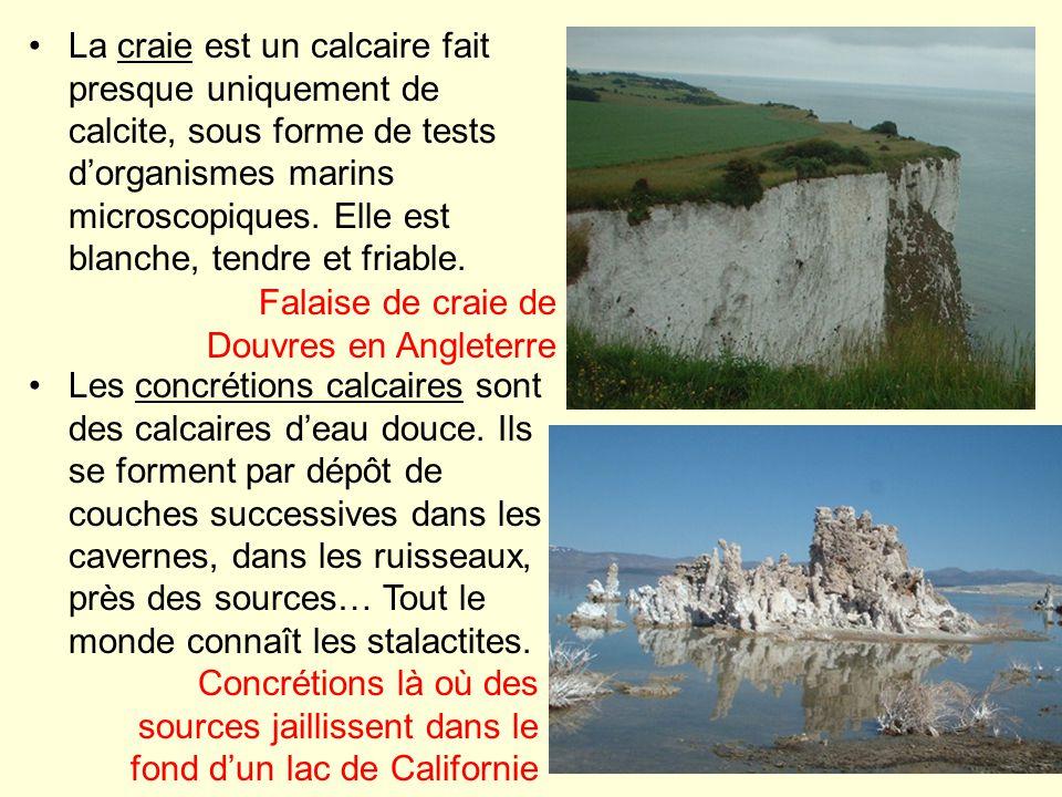 La craie est un calcaire fait presque uniquement de calcite, sous forme de tests dorganismes marins microscopiques. Elle est blanche, tendre et friabl
