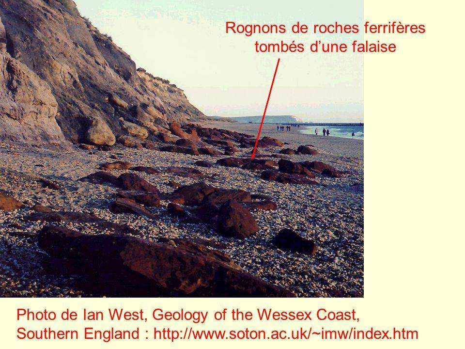 Photo de Ian West, Geology of the Wessex Coast, Southern England : http://www.soton.ac.uk/~imw/index.htm Rognons de roches ferrifères tombés dune fala