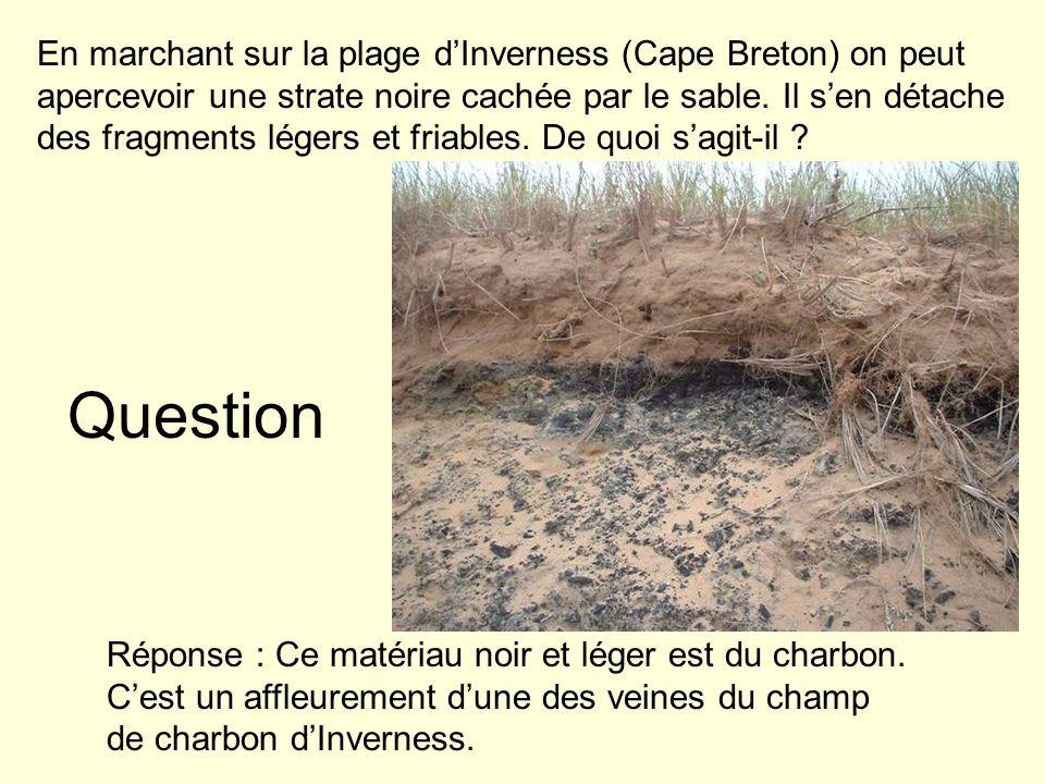 Question En marchant sur la plage dInverness (Cape Breton) on peut apercevoir une strate noire cachée par le sable. Il sen détache des fragments léger