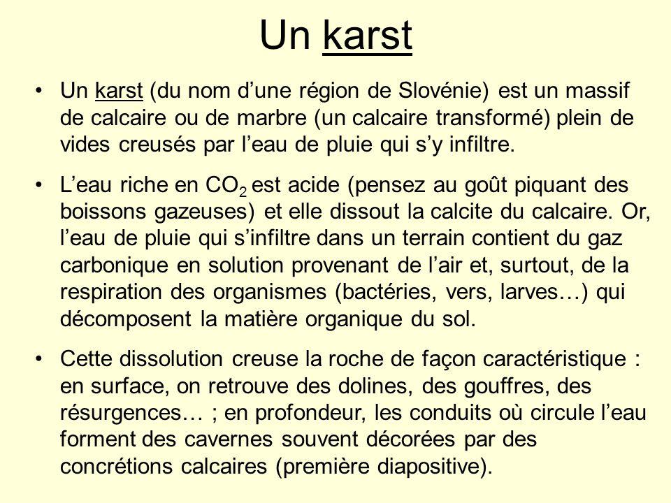 Un karst Un karst (du nom dune région de Slovénie) est un massif de calcaire ou de marbre (un calcaire transformé) plein de vides creusés par leau de