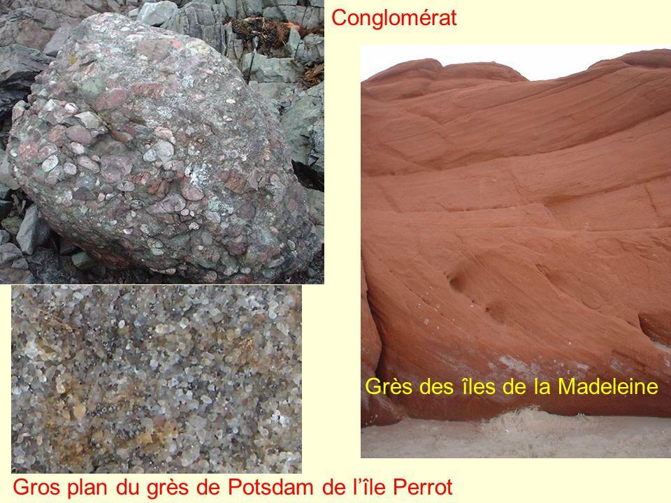 La craie est un calcaire fait presque uniquement de calcite, sous forme de tests dorganismes marins microscopiques.