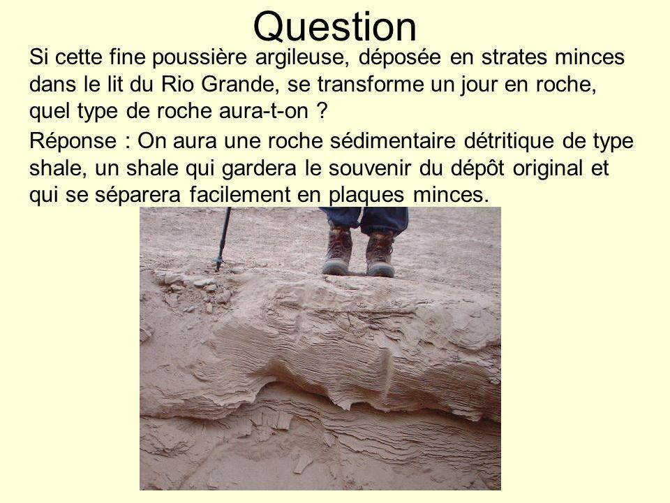Question Si cette fine poussière argileuse, déposée en strates minces dans le lit du Rio Grande, se transforme un jour en roche, quel type de roche au