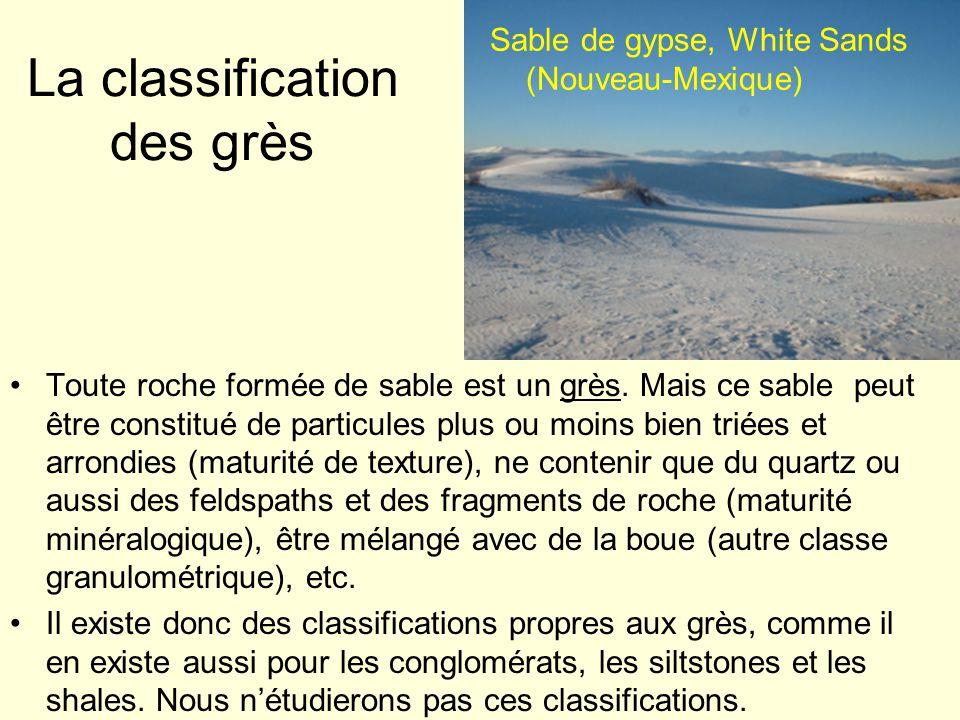 Sable de gypse, White Sands (Nouveau-Mexique) La classification des grès Toute roche formée de sable est un grès. Mais ce sable peut être constitué de