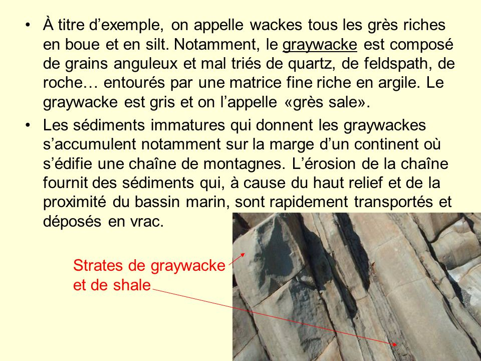 À titre dexemple, on appelle wackes tous les grès riches en boue et en silt. Notamment, le graywacke est composé de grains anguleux et mal triés de qu