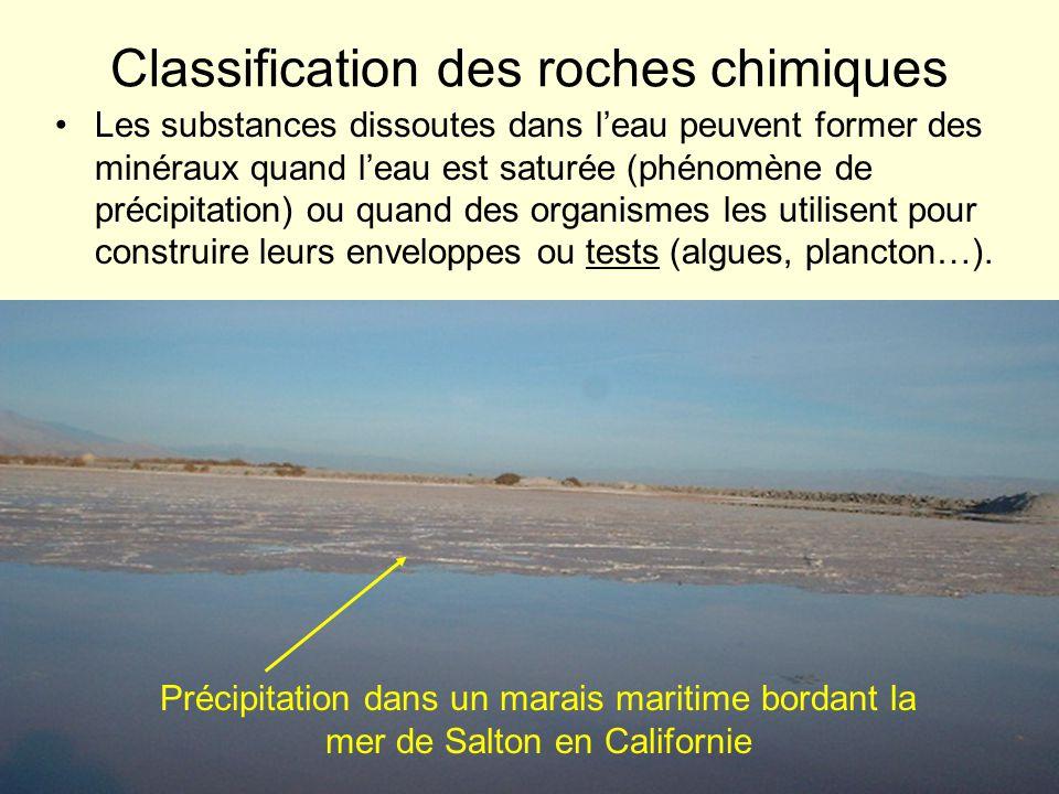 On classe les roches qui résultent de ces dépôts en fonction du minéral dominant : –Roches carbonatées : formées de calcite (CaCO 3 ), daragonite (une autre forme cristalline de CaCO 3 ) ou de dolomite (CaMg[CO 3 ] 2 ).