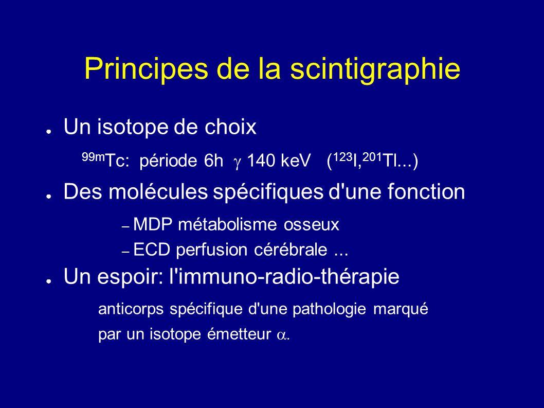 Principes de la scintigraphie Un isotope de choix 99m Tc: période 6h 140 keV ( 123 I, 201 Tl...) Des molécules spécifiques d'une fonction – MDP métabo