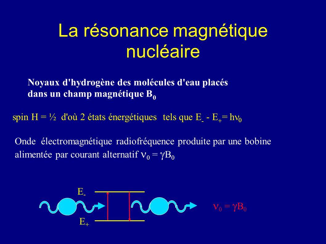 La résonance magnétique nucléaire Onde électromagnétique radiofréquence produite par une bobine alimentée par courant alternatif 0 = B 0 E+E+ 0 = B 0