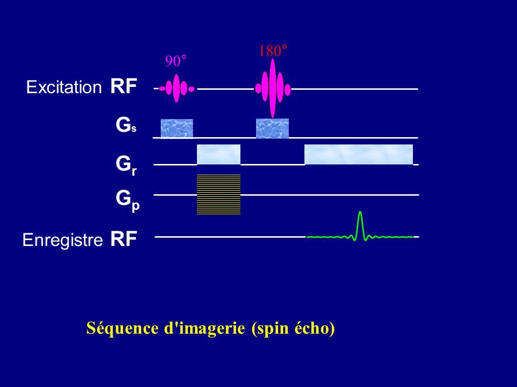 Excitation RF GsGs GrGr GpGp 180° 90° Enregistre RF Séquence d'imagerie (spin écho)