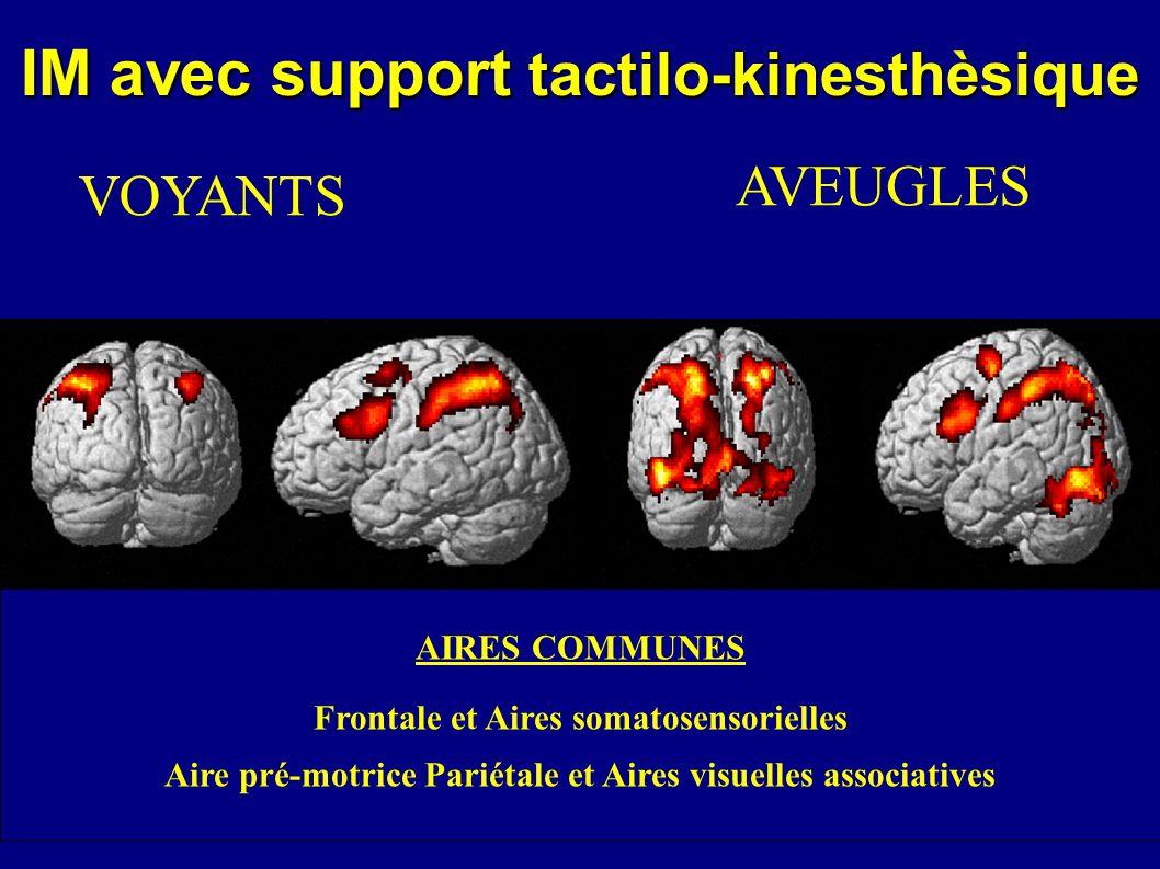 IM avec support tactilo-kinesthèsique VOYANTS AVEUGLES AIRES COMMUNES Frontale et Aires somatosensorielles Aire pré-motrice Pariétale et Aires visuell
