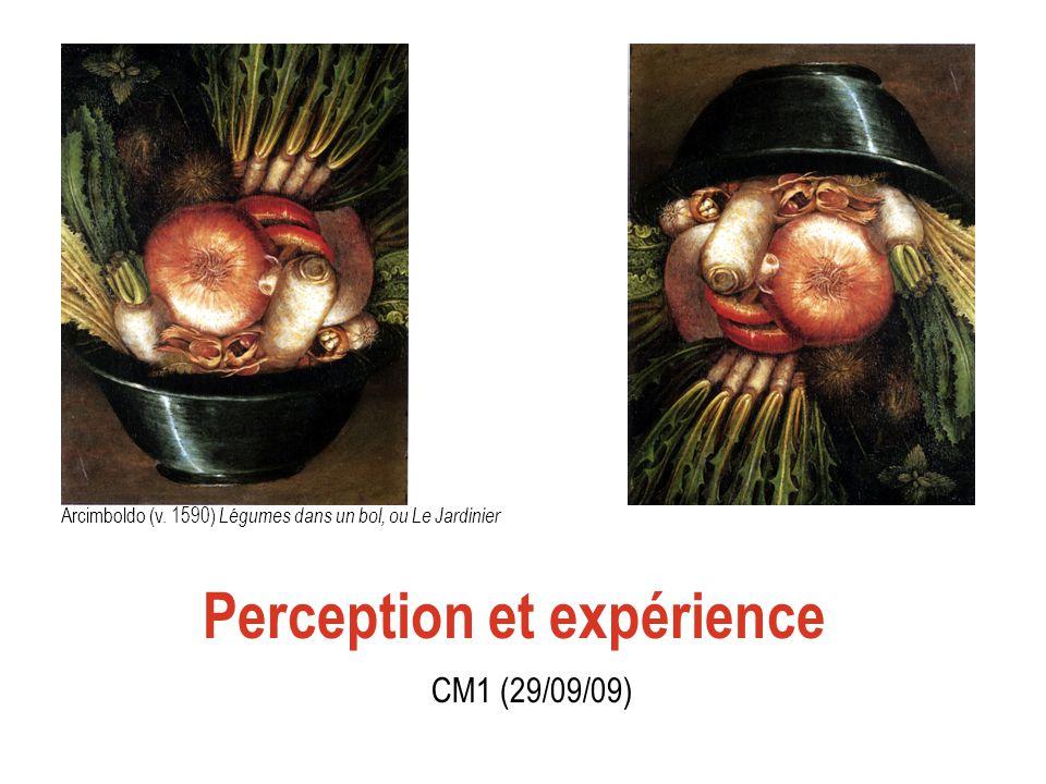 Quest-ce que percevoir .Quest- ce que faire une expérience - avoir une expérience .
