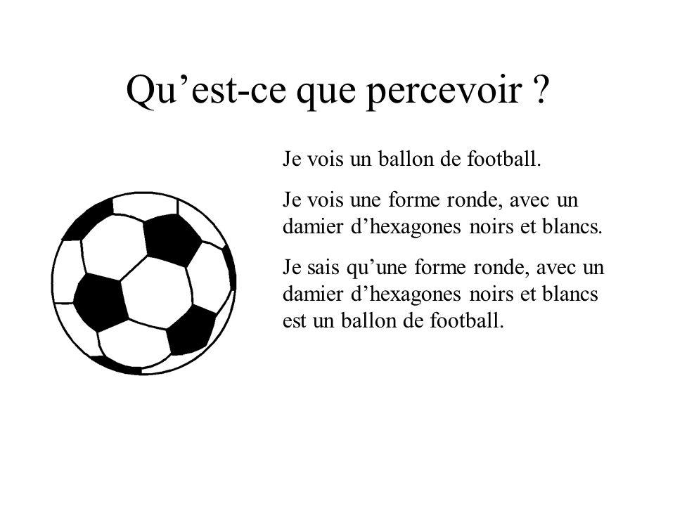 Je vois un ballon de football.Je vois une forme ronde, avec un damier dhexagones noirs et blancs.
