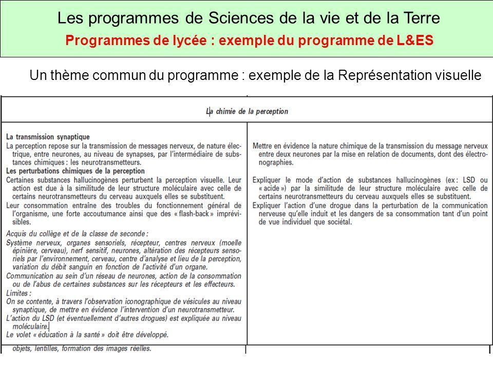 Les programmes de Sciences de la vie et de la Terre Programmes de lycée : exemple du programme de L&ES Un thème commun du programme : exemple de la Représentation visuelle