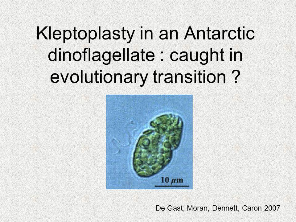 Kleptoplasty in an Antarctic dinoflagellate : caught in evolutionary transition ? De Gast, Moran, Dennett, Caron 2007