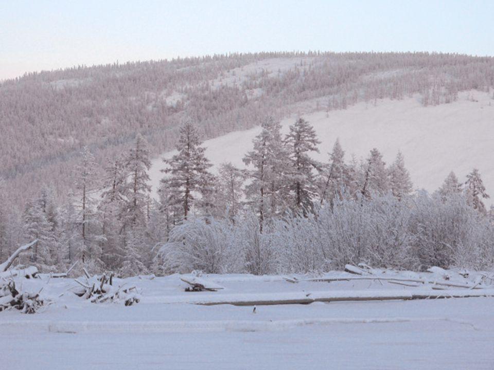 Pour arriver à Oymyakon, nous devons prendre lautoroute Kolyma construite sur lordre de Staline par des condamnés et prisonniers politiques.