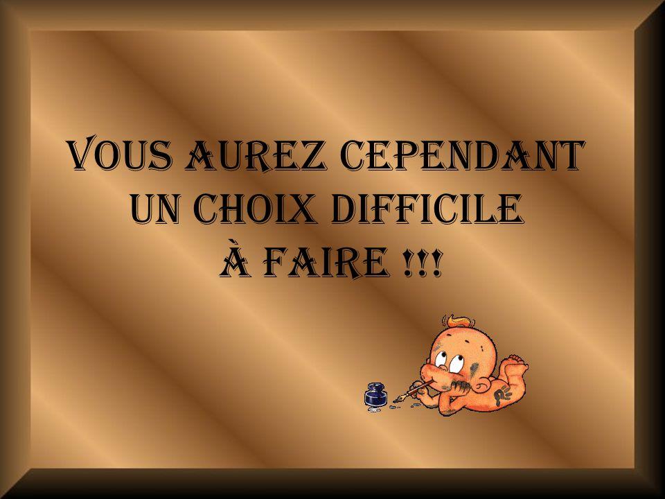 VOUS AUREZ CEPENDANT UN CHOIX DIFFICILE À FAIRE !!!