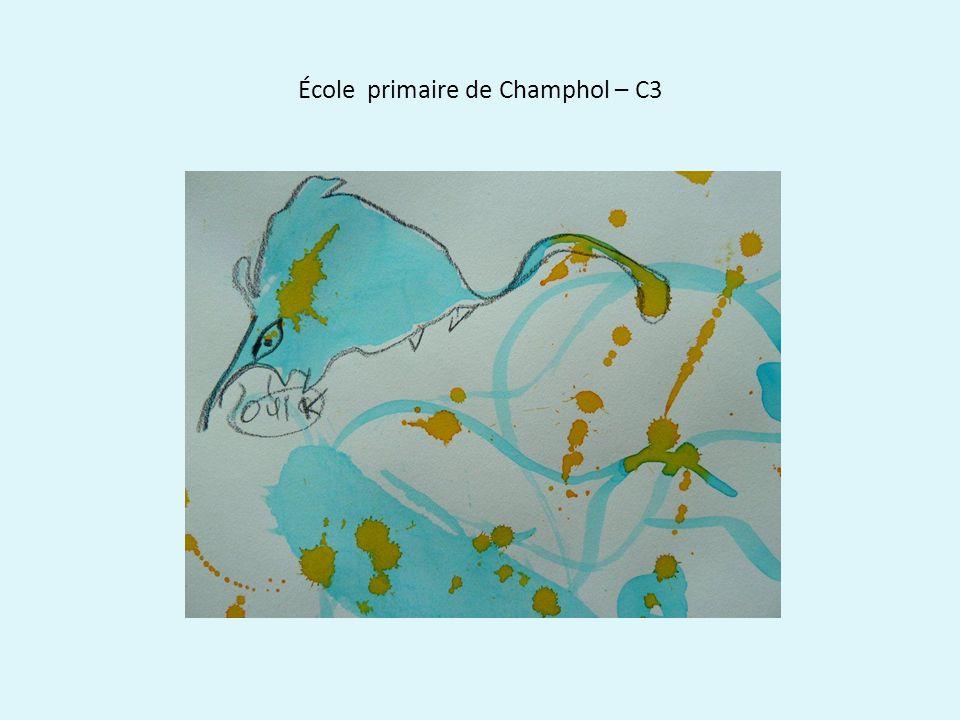 École primaire de Champhol – C3