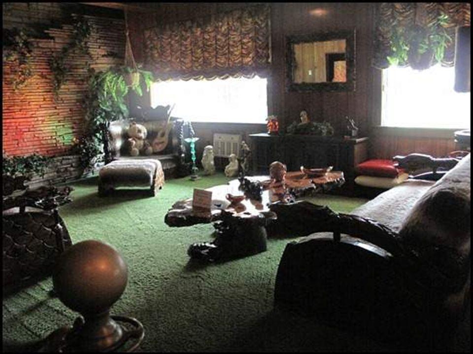 Chambre Jungle Room