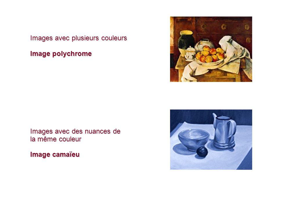 Images avec plusieurs couleurs Image polychrome Images avec des nuances de la même couleur Image camaïeu