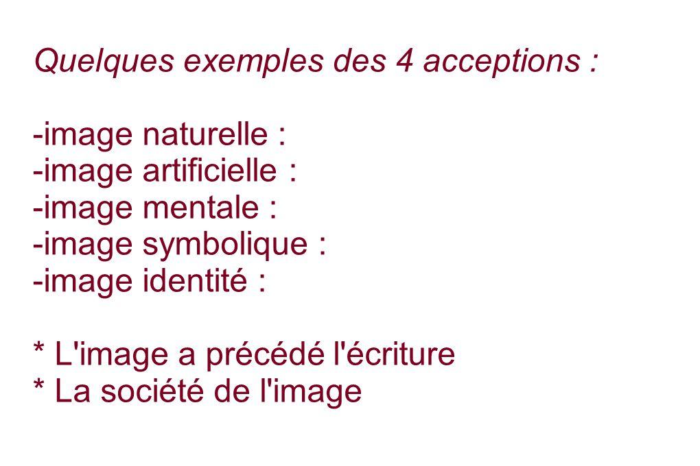 Quelques exemples des 4 acceptions : -image naturelle : -image artificielle : -image mentale : -image symbolique : -image identité : * L image a précédé l écriture * La société de l image