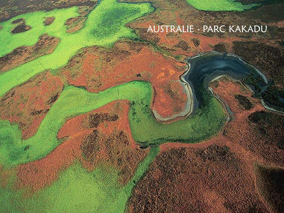 WHITE ISLAND - ancien cratère