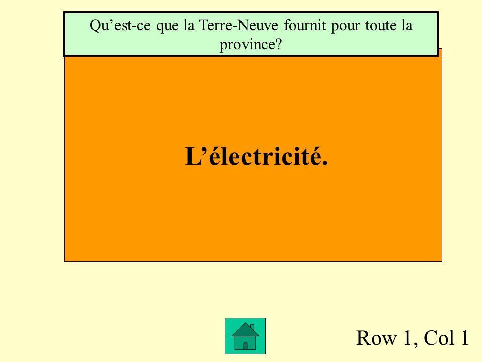 Row 1, Col 1 Lélectricité. Quest-ce que la Terre-Neuve fournit pour toute la province?