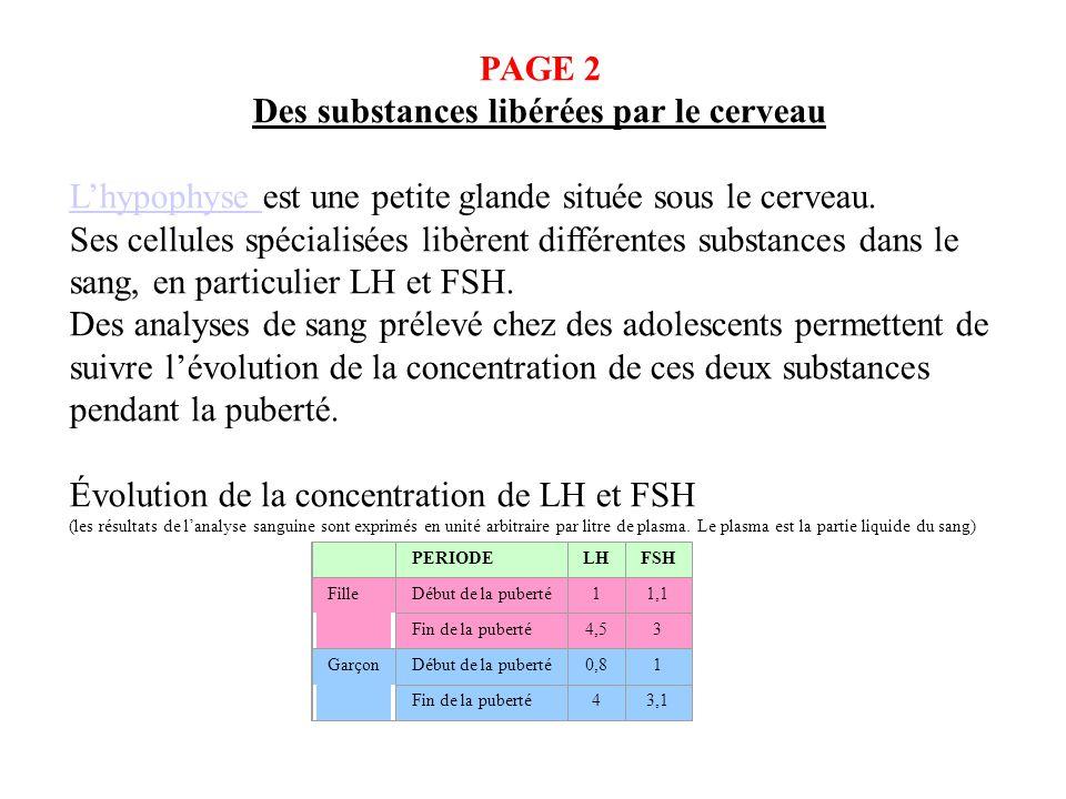 PAGE 2 Des substances libérées par le cerveau Lhypophyse Lhypophyse est une petite glande située sous le cerveau. Ses cellules spécialisées libèrent d
