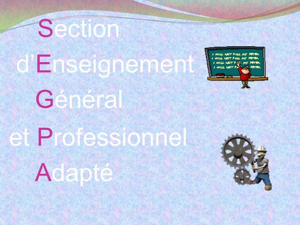 Une équipe de la SEGPA élargie… Des Professeurs des Ecoles spécialisés (CAPA-SH option F) Des Professeurs de Lycée Professionnel (2CA-SH) Des Professeurs Certifiés (2CA-SH) Un directeur adjoint chargé de la SEGPA Un Conseiller Principal dEducation Un Conseiller dOrientation Psychologue Une Assistante sociale Une infirmière Une documentaliste …