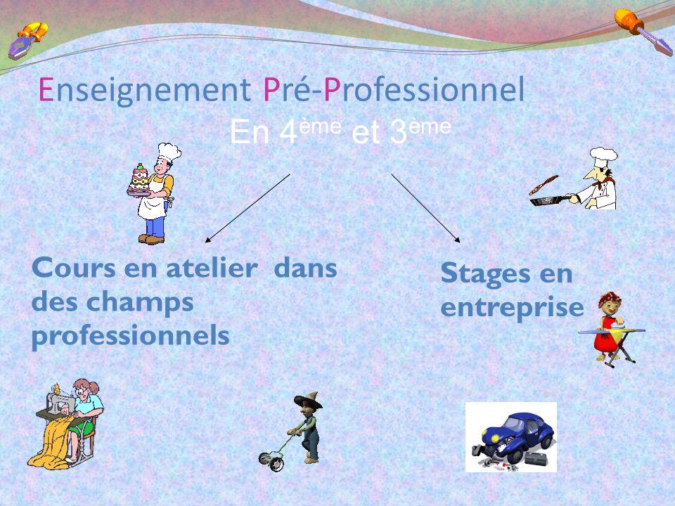 Enseignement Pré-Professionnel En 4 ème et 3 ème Cours en atelier dans des champs professionnels Stages en entreprise
