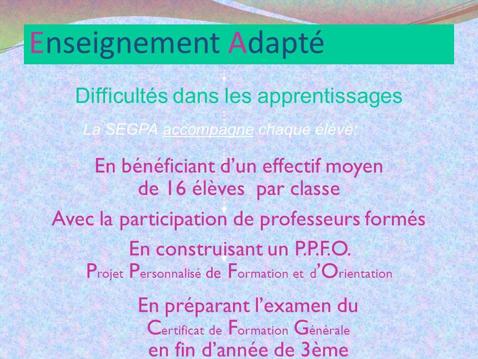 Quelles formations après la SEGPA .