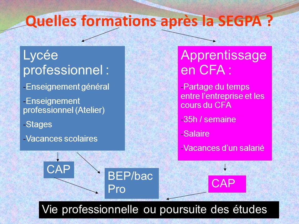 Quelles formations après la SEGPA ? Lycée professionnel : -Enseignement général -Enseignement professionnel (Atelier) -Stages -Vacances scolaires Appr