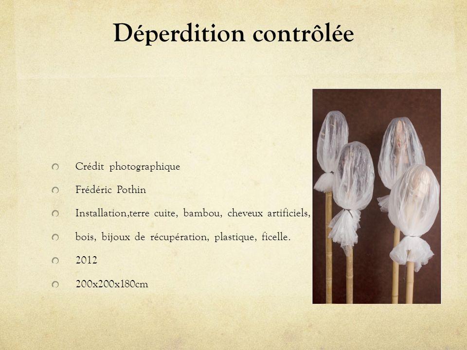 Déperdition contrôlée Crédit photographique Frédéric Pothin Installation,terre cuite, bambou, cheveux artificiels, bois, bijoux de récupération, plastique, ficelle.