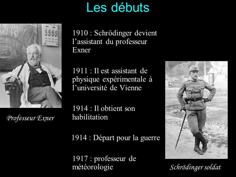 Particulièrement en physique et en mathématique, Schrödinger avait un don pour comprendre immédiatement et rapidement ce qui était expliqué en cours.