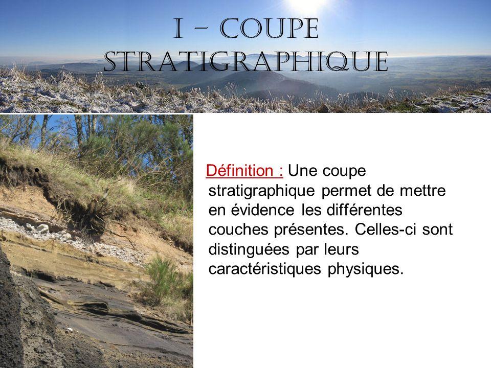 I – Coupe stratigraphique Définition : Une coupe stratigraphique permet de mettre en évidence les différentes couches présentes. Celles-ci sont distin
