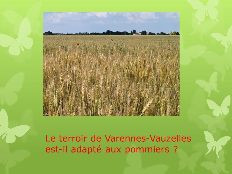 Le terroir de Varennes-Vauzelles est-il adapté aux pommiers ?