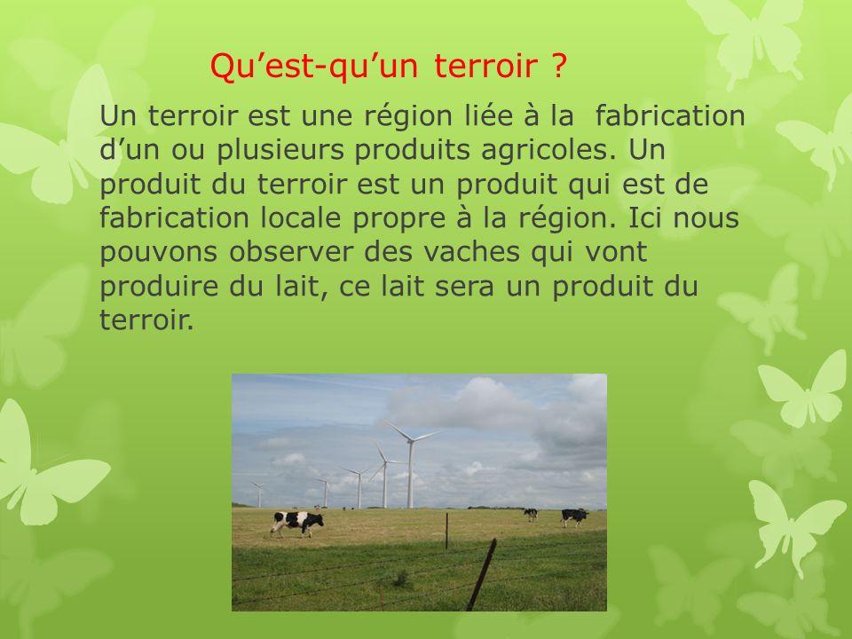 Un terroir est une région liée à la fabrication dun ou plusieurs produits agricoles. Un produit du terroir est un produit qui est de fabrication local