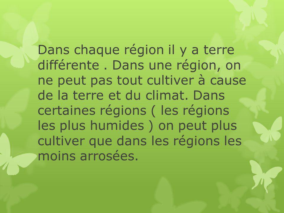 Dans chaque région il y a terre différente. Dans une région, on ne peut pas tout cultiver à cause de la terre et du climat. Dans certaines régions ( l