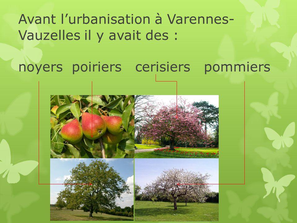 Avant lurbanisation à Varennes- Vauzelles il y avait des : noyers poiriers cerisiers pommiers