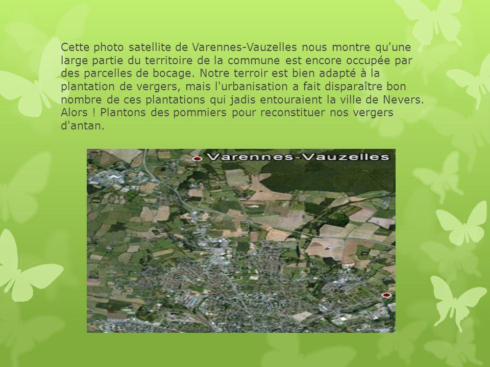 Cette photo satellite de Varennes-Vauzelles nous montre qu'une large partie du territoire de la commune est encore occupée par des parcelles de bocage