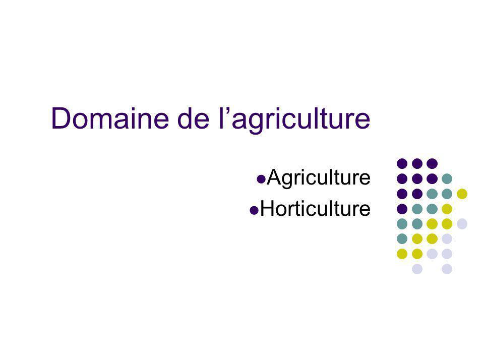 Domaine de lagriculture Agriculture Horticulture