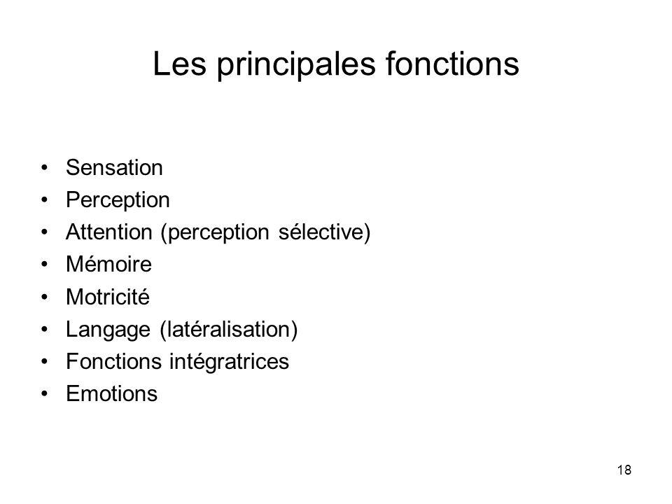 18 Les principales fonctions Sensation Perception Attention (perception sélective) Mémoire Motricité Langage (latéralisation) Fonctions intégratrices Emotions