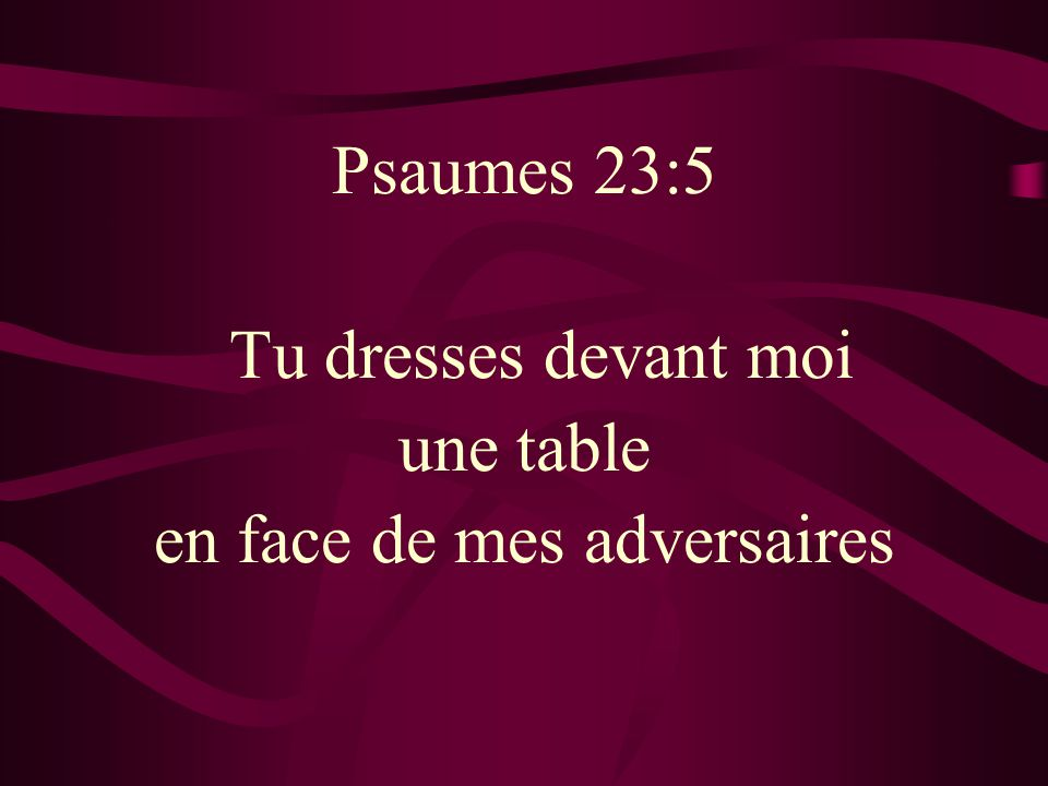 Psaumes 23:5 Tu dresses devant moi une table en face de mes adversaires
