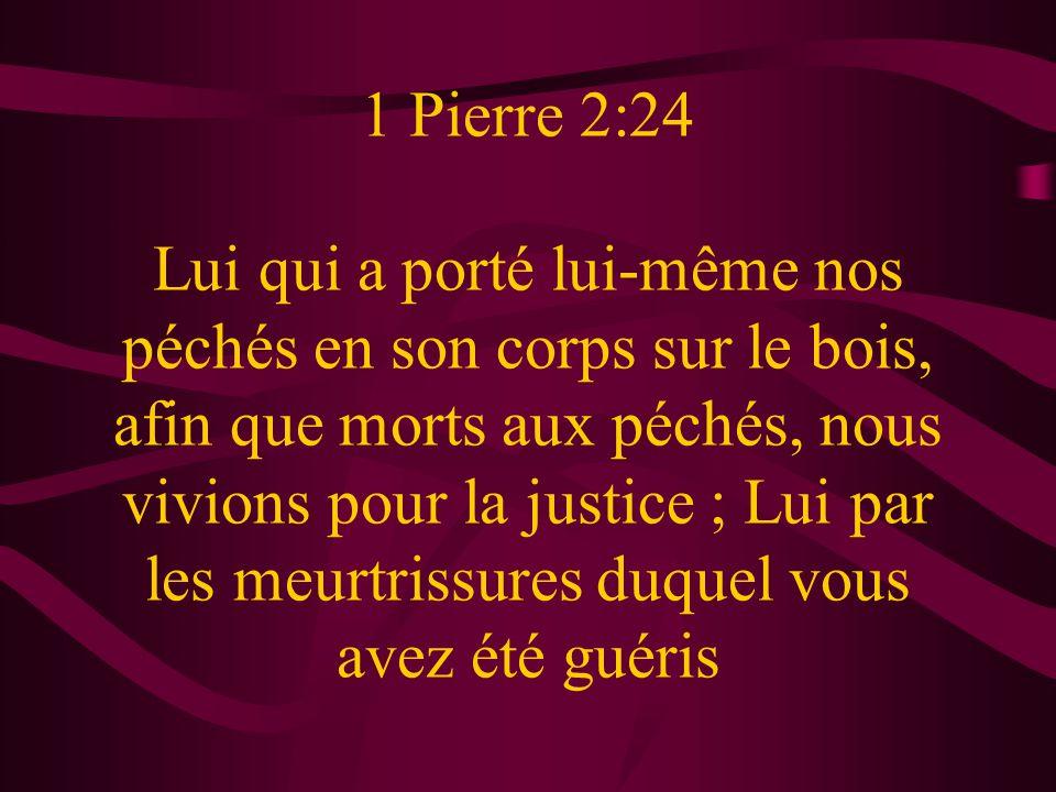 1 Pierre 2:24 Lui qui a porté lui-même nos péchés en son corps sur le bois, afin que morts aux péchés, nous vivions pour la justice ; Lui par les meur