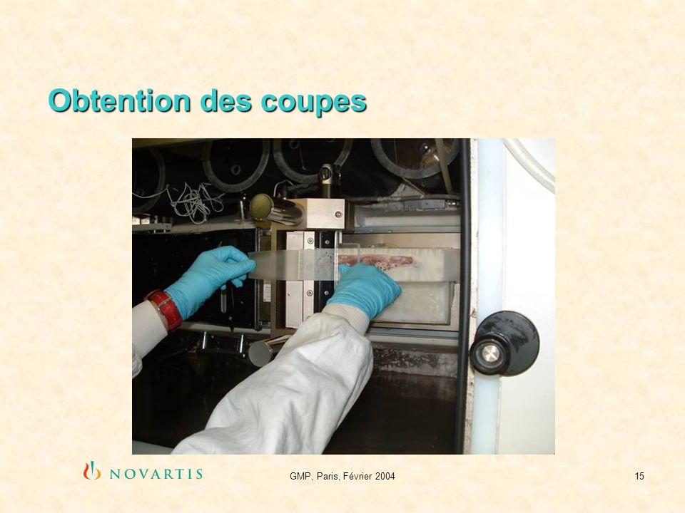 GMP, Paris, Février 200415 Obtention des coupes
