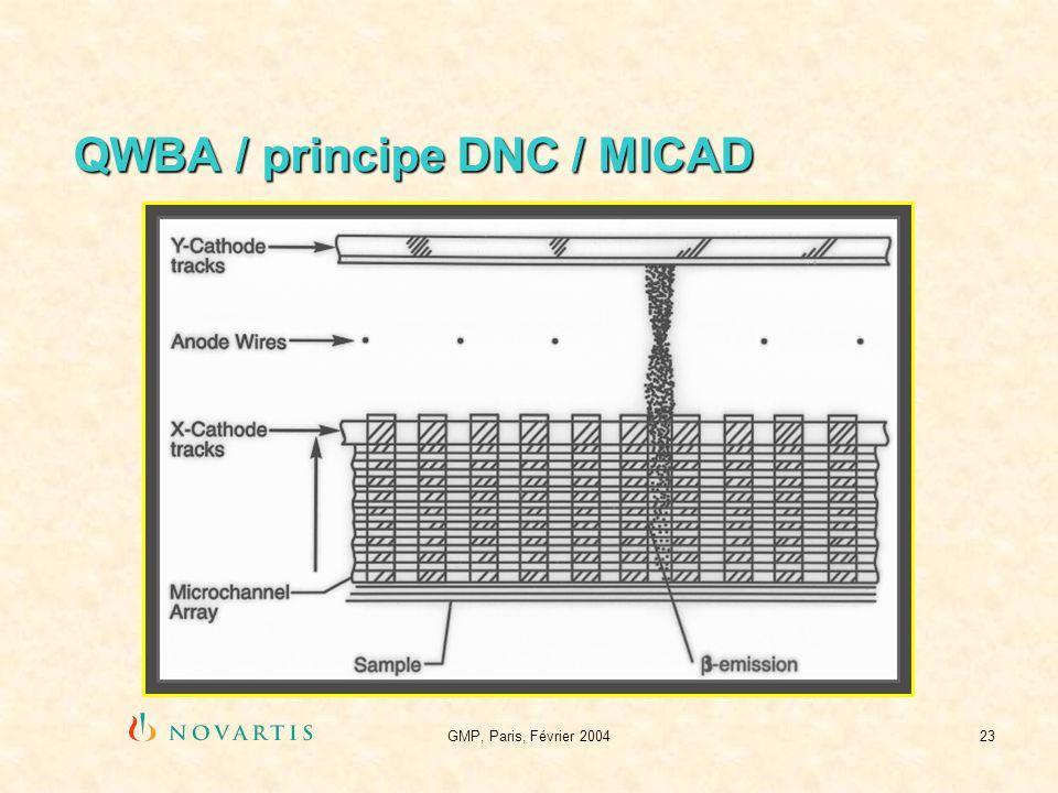 GMP, Paris, Février 200423 QWBA / principe DNC / MICAD